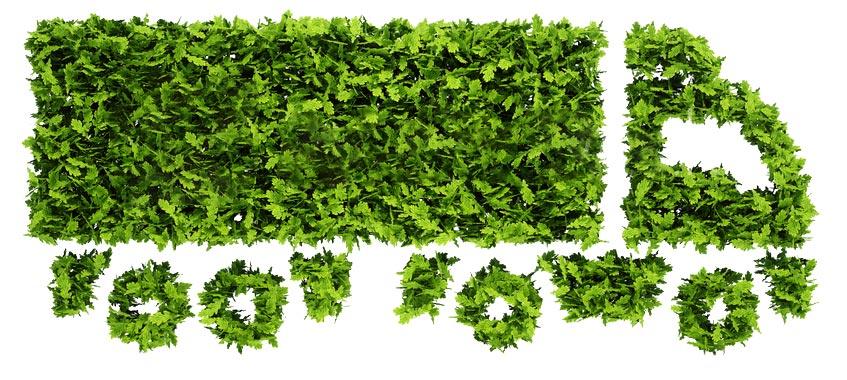 Taboga-Trasporti-green